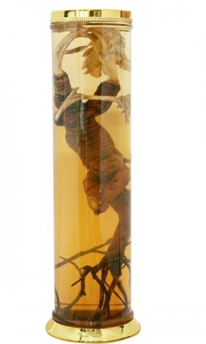 Bình Ngâm Rượu MS58 – 38 lít 2650000